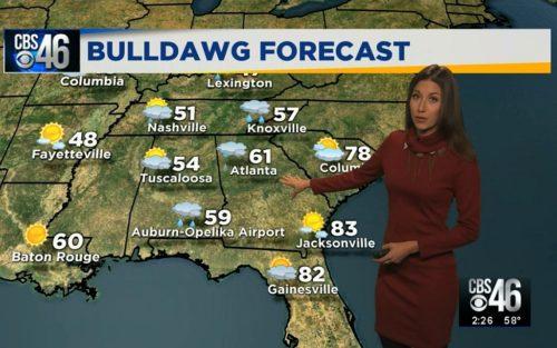 Ella's Bulldawg Forecast for Georgia-Florida 2017
