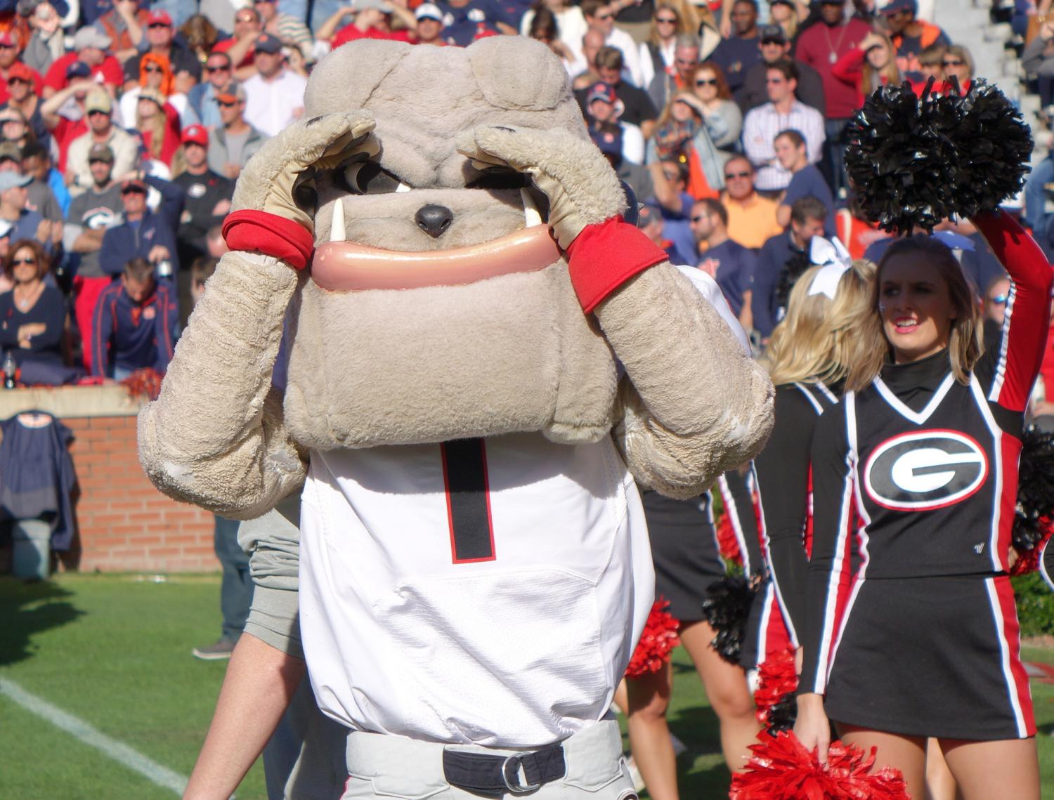 Hairy Dawg at Georgia vs. Auburn - 14-Nov-2015 (Photo by Bulldawg Illustrated's Greg Poole)