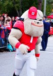 Hairy Dawg - Dawg Walk - GASouthern Game 21-Nov-2015