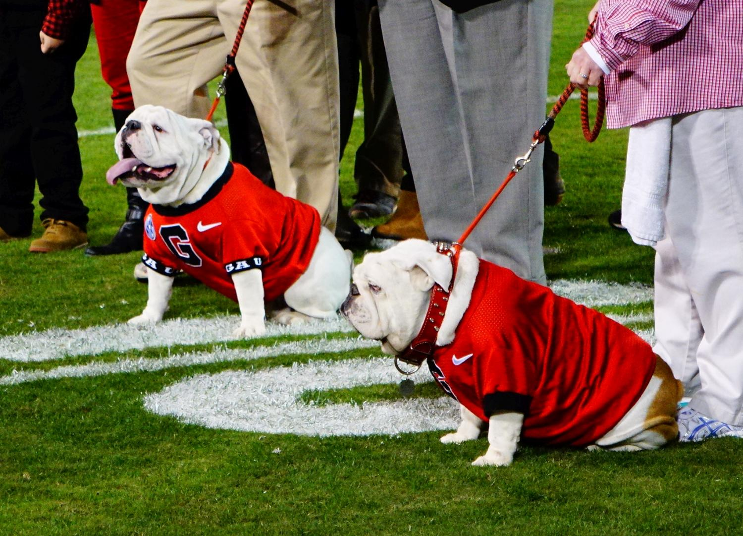 (Left) Que - Uga X, (Right) Russ - Uga IX