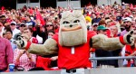 Hairy Dawg with Georgia fans - 2nd half UGA vs. GT 28-Nov-2015
