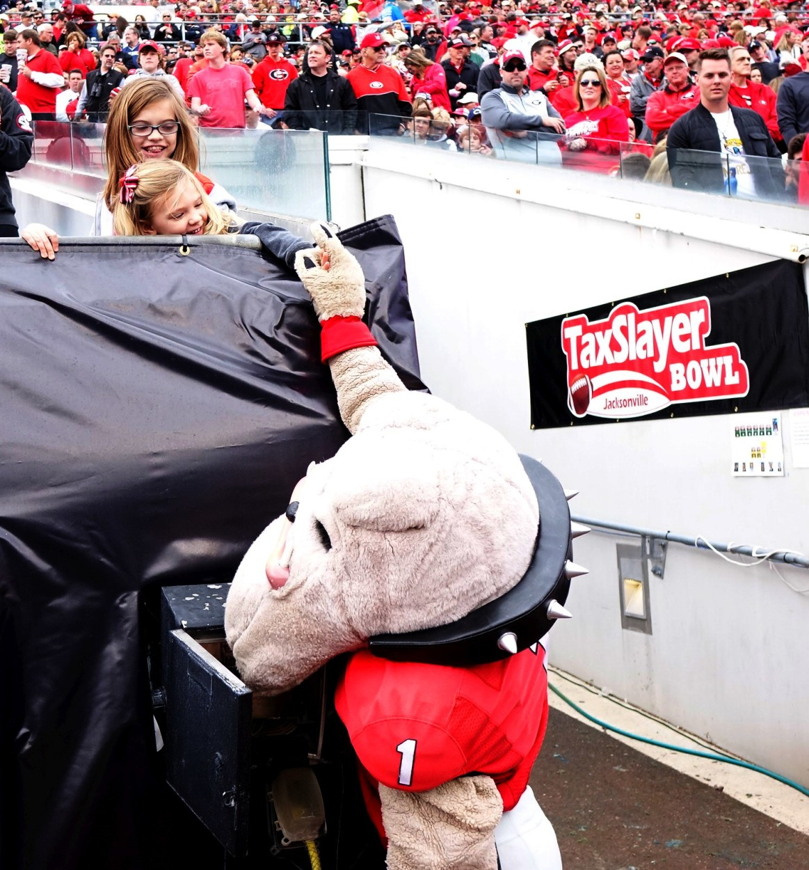 Hairy Dawg and some young Georgia pups -TaxSlayer Bowl - 02-JAN-2015 (Photo by Greg Poole/Bulldawg Illsutrated)