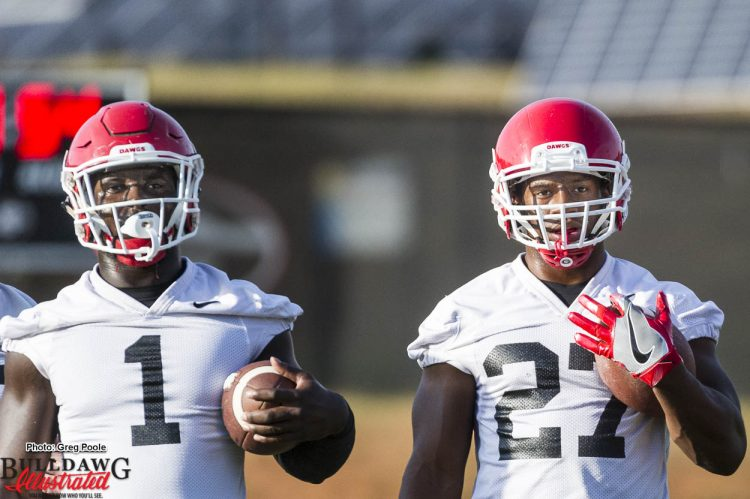 Sony Michel (1) and Nick Chubb's