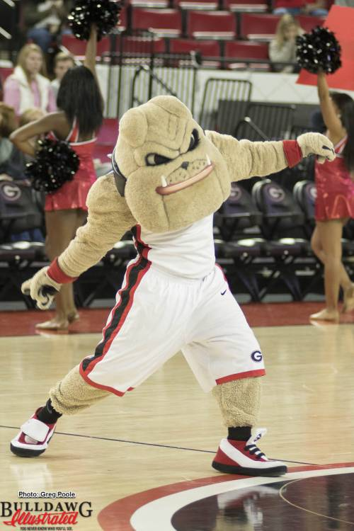 Hairy Dawg fires up the crowd during a Georgia men's basketball game against Charleston Southern 17-Dec-2016
