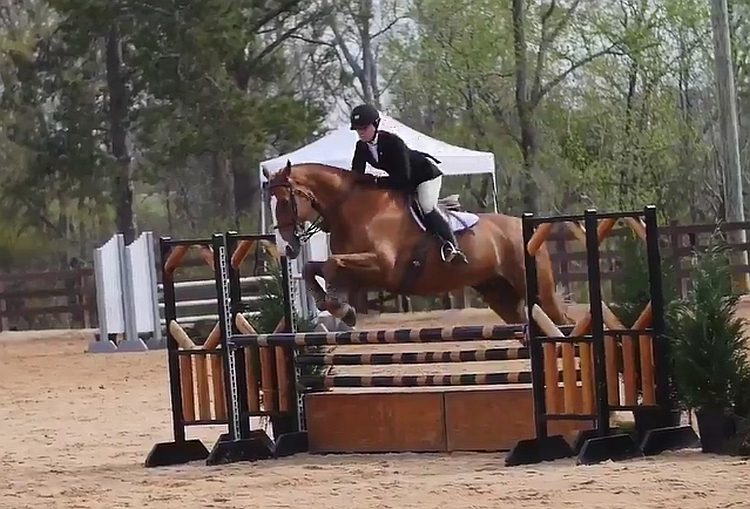 Georgia equestrian team rider and horse competing in the 2017 SEC Equestrian Championship finals 2017-MAR-25